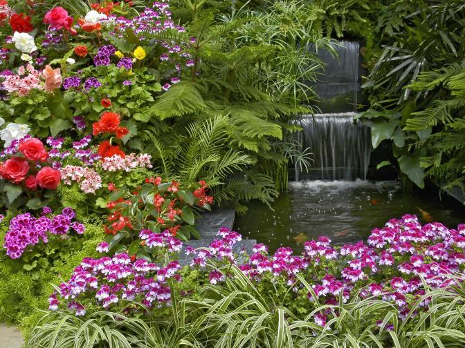 Garden_plants