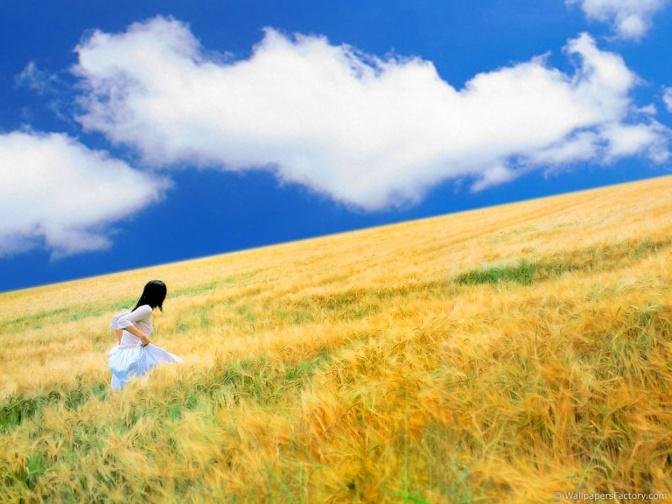 summer-season-New-image